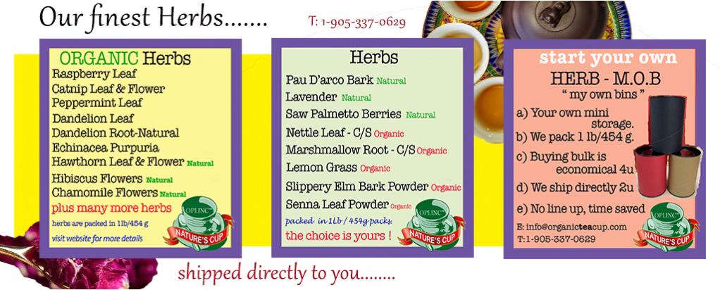 organic tea 10.9