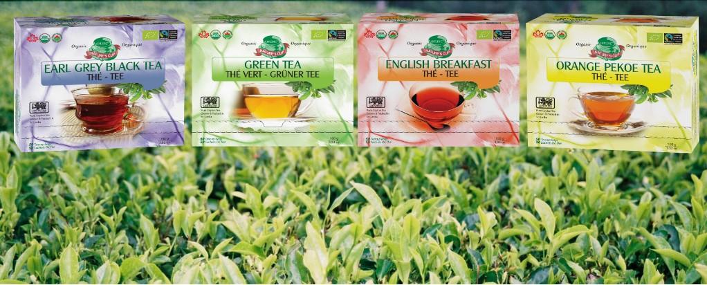 organic tea 10.5